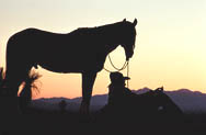 thumbnail link to photograph of Steve as Tom Horn on location, silhouette at dusk with horse